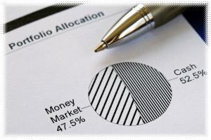 Portfolio allocation graphic