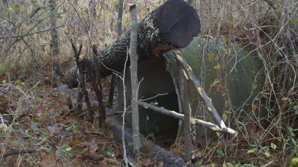 Survival Trapping – What and Where to Trap