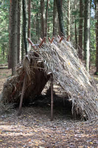 Building Survival Shelters