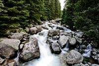Survival Myths Natural Water Safe to Drink