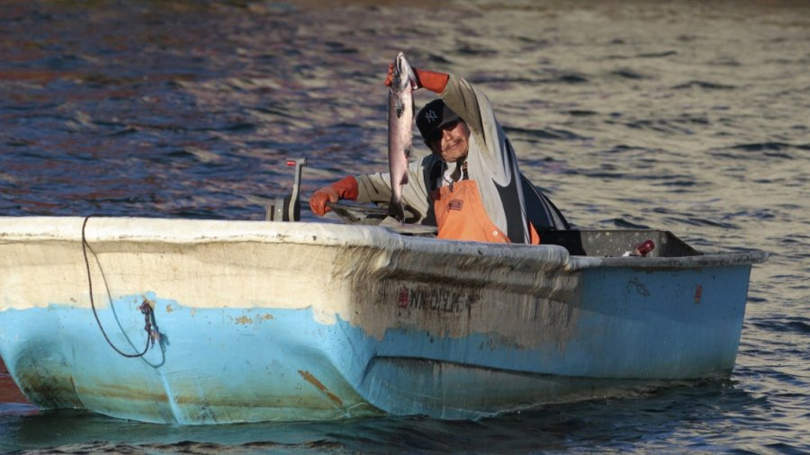 House votes to shed limits on commercial and sport fishing