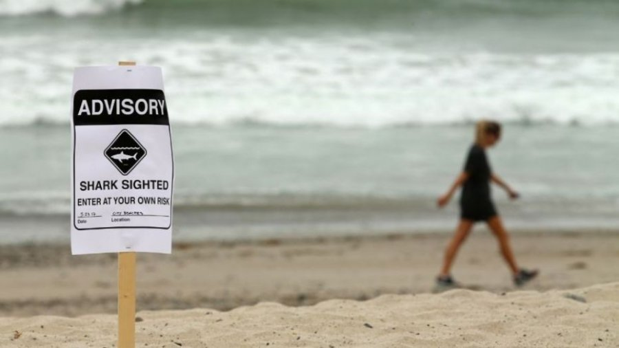 Florida beaches closed after shark attacks leave 2 injured: report