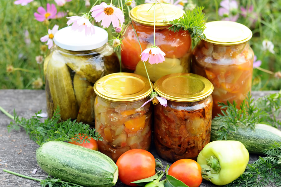 Food Solutions & Food Storage Secrets