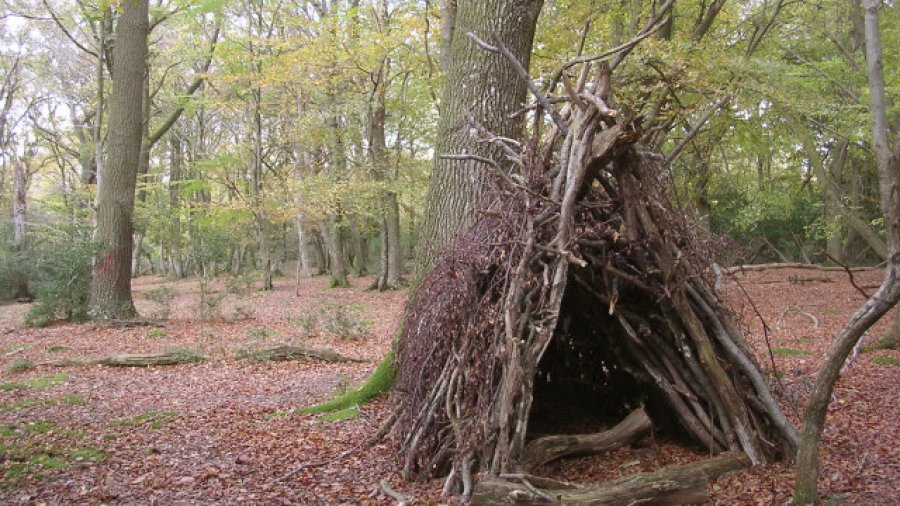 Survival Shelter: Building Temporary Survival Shelters in the Wild