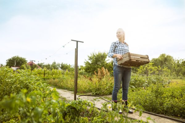 Young farmer working at her garden in sunny day